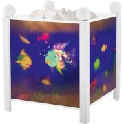 Nachtlicht Magische Laterne Regenbogenfisch, weiß